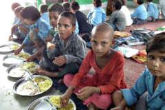 save the humanity feeding food
